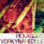 Hexagons_Vorkynahedule