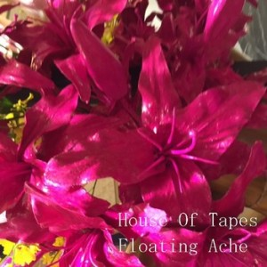 house of tapes flaoting